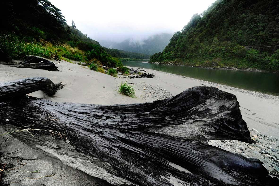 Marahau, New Zealand>2016