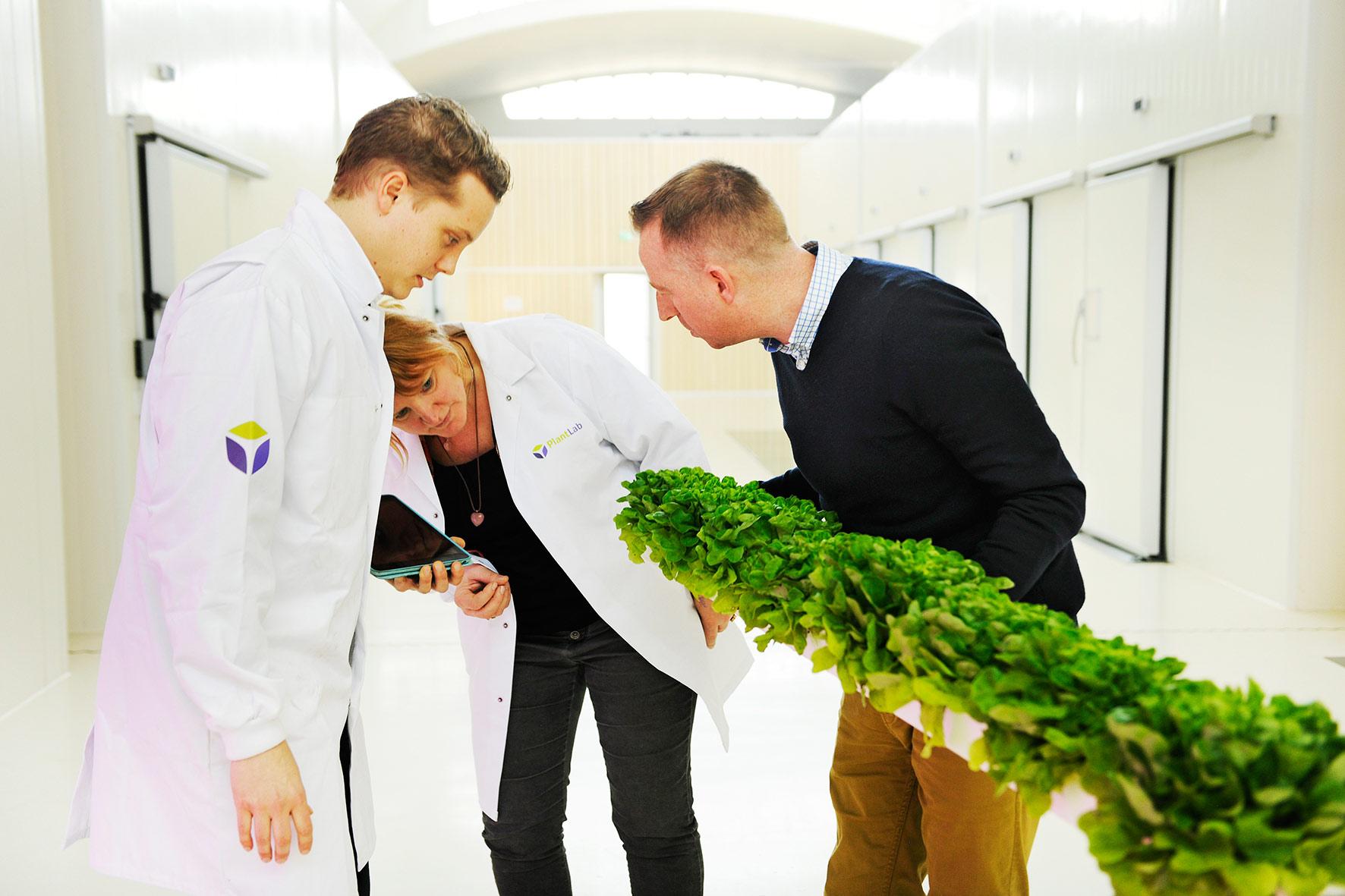 Rabobank Nederland, 'Banking For Food'>2014